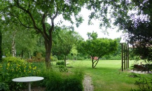 de tuin van Hondsrughill