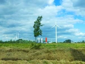 de weg naar Ruigoord