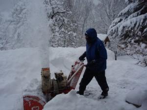 Werner in de winter
