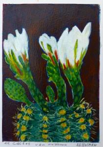 Aaltje Kolman Cactus van haar vader