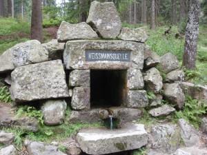 de bron van de Main in het Fichtelgebergte