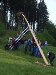 het oprichten van de Meiboom op onze berg
