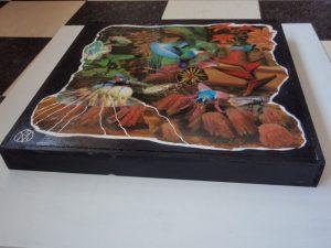 kolibrie en vlieg collage ~ anne vellinga